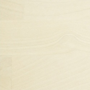 91-bielená-breza